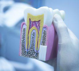 smalto-dei-denti-tutta-questione-geni
