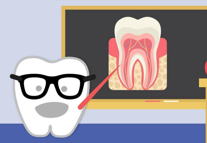 dieci-risposte-sulla-salute-nostri-denti