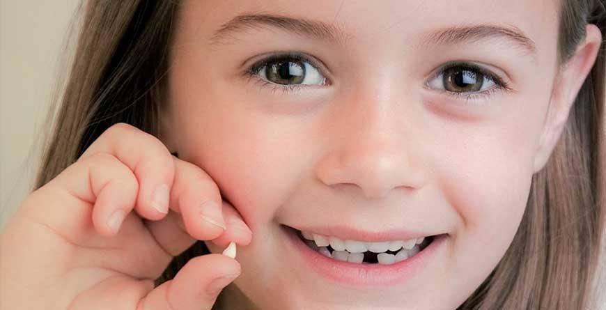 denti-da-latte-possibili-utilizzi-futuri
