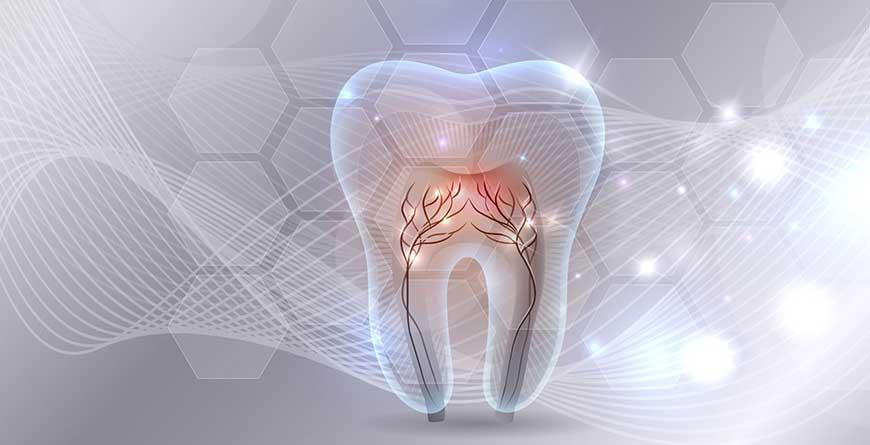 i-segreti-dello-smalto-dentale