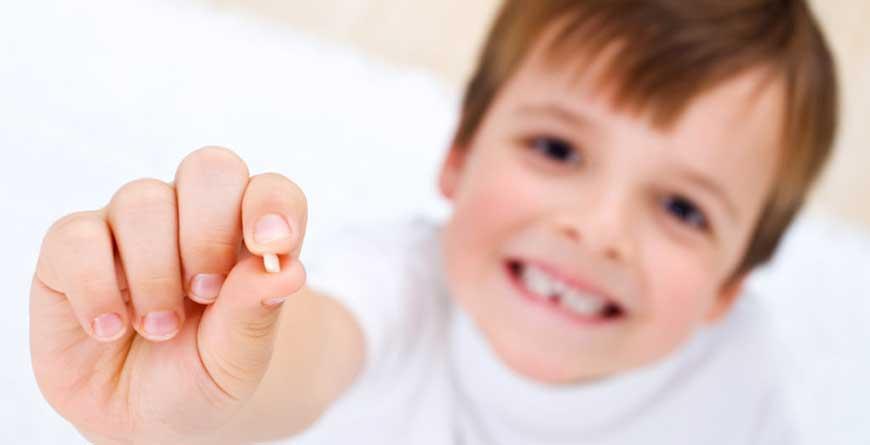 denti-che-cadono-denti-che-crescono